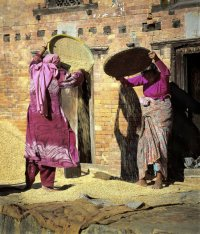 Women+corn-Bhaktapur