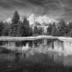Tetons Reflection 5