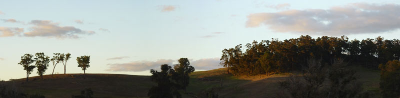 Noggerup panorama