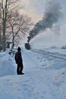 Watching the train.