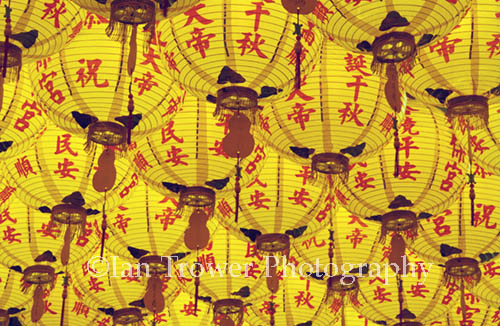 Yellow Lanterns, Taichung