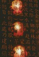 Lantern Reflections, Taichung