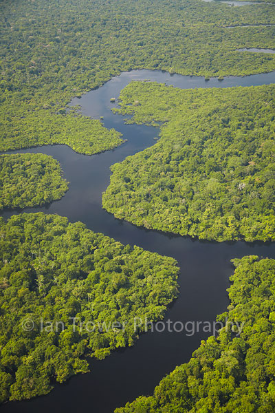 Amazon rainforest and Rio Negro, Manaus