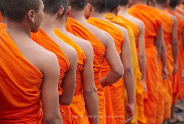 Monks in parade, Phnom Penh