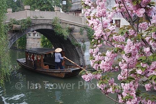 Spring Blossom, Suzhou