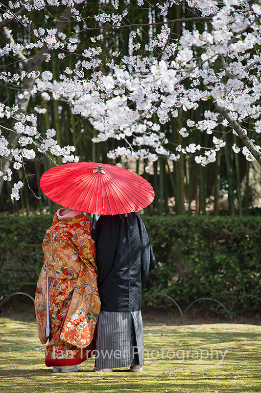 Couple in traditional clothes in Koraku-en Garden, Okayama