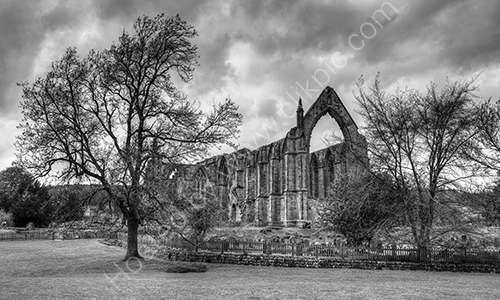 3rd. Bolton Abbey in mono