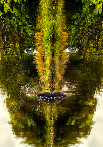 1st. Green lady