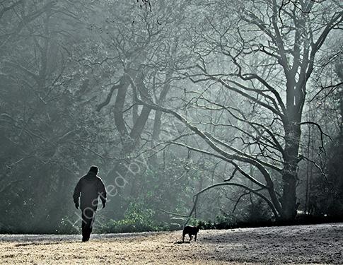 HC. A frosty morning