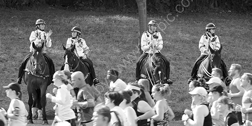 HC. Mounted police at Great North Run