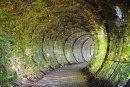 Poison Garden, Alnwick gardens