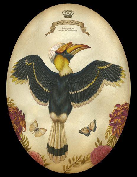 Imagine Gallery Great Hornbill