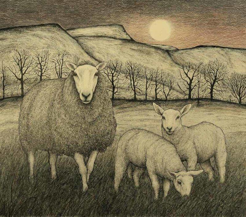 Twin Lambs at Full Moon