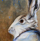 White Hare  - by Jackie Morris