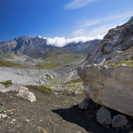 Picos View