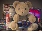 Teddy the Photographer