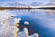 Frosty New Forest pond