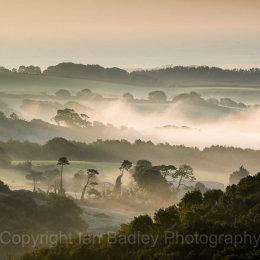 Misty dawn over Knighton Down, Isle of Wight, England