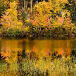 Autumn colour in Cape Breton, Nova Scotia, Canada