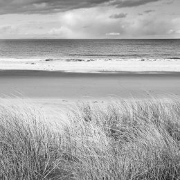 Grasses and sandy beach at Red Point, Scotland west coast