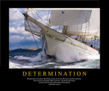 DETERMINATION is the drive and ability to carry out a task with vigour and firm intentions.