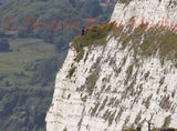 PIC SHOWS:Tourists taking in the views of the Channel from the Cliffs at Dover.Some unaware of the Sheer drop and the Cracks in the Cliffs.