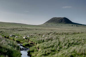 Slemish Mountain in Summer