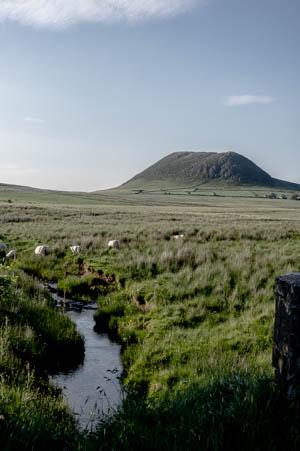 Slemish Mountain in Summer 2