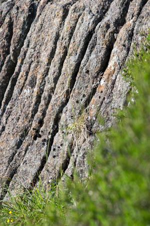Slemish Rock 2