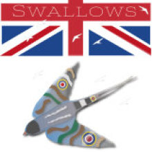 Swallows of Britain