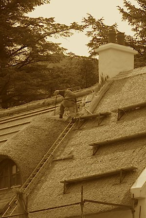 The Roofer Man