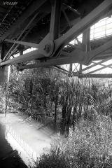 Under tyhe bridge