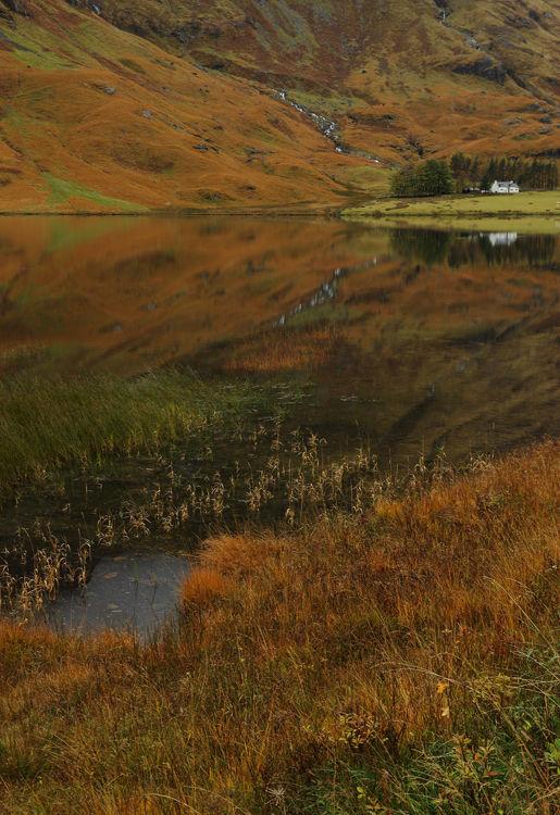 Cottage Reflection