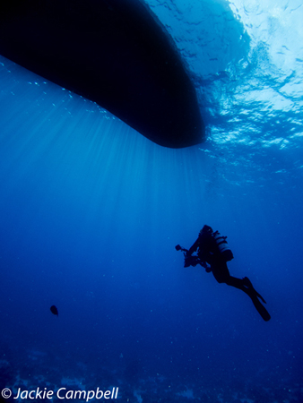 Diver in sunbeams under the boat, Red Sea, Egypt