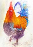 Headstrong Watercolour