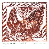 Pecking Orders - Hens