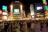 Shibuya Serenity
