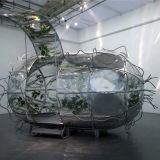 Monologue Patterns (chrysalis), 2005