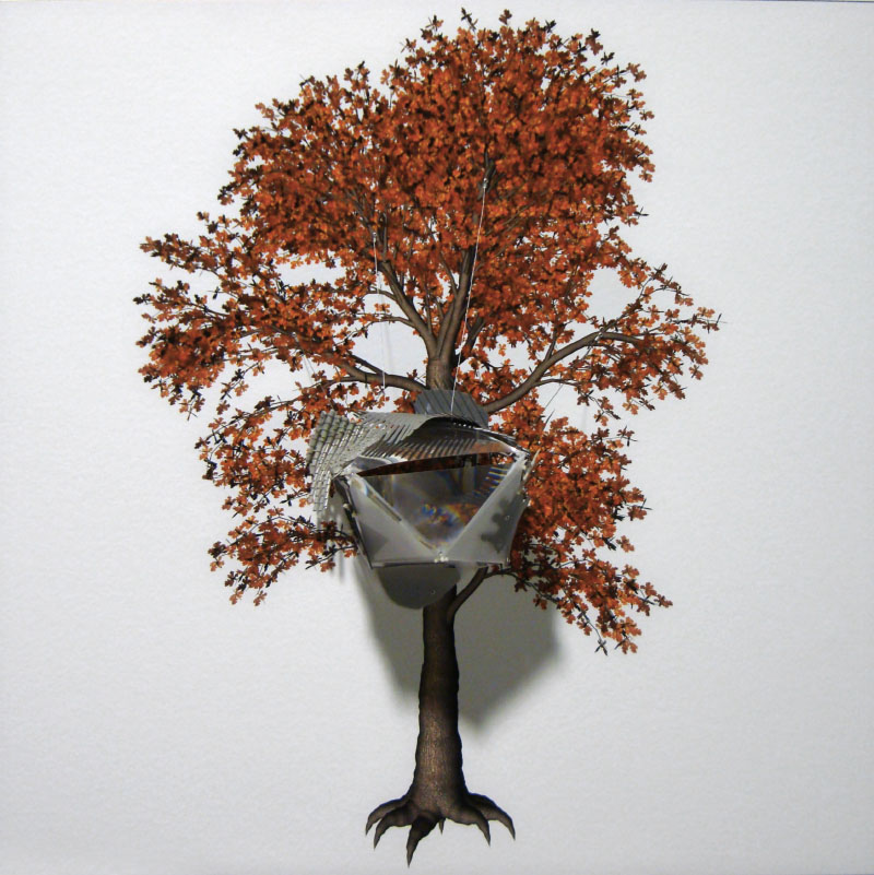 The Painted Distances (Quercus Robur) 2008
