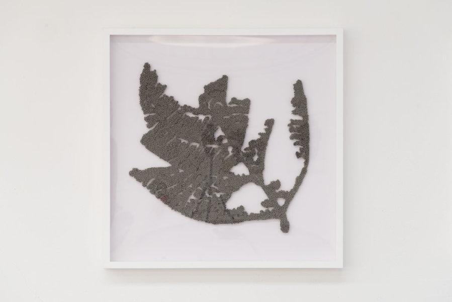 Confining forces (leaf 6), 2016