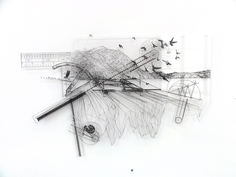 The arbitrary rules (fractalized with double organic path), 2011