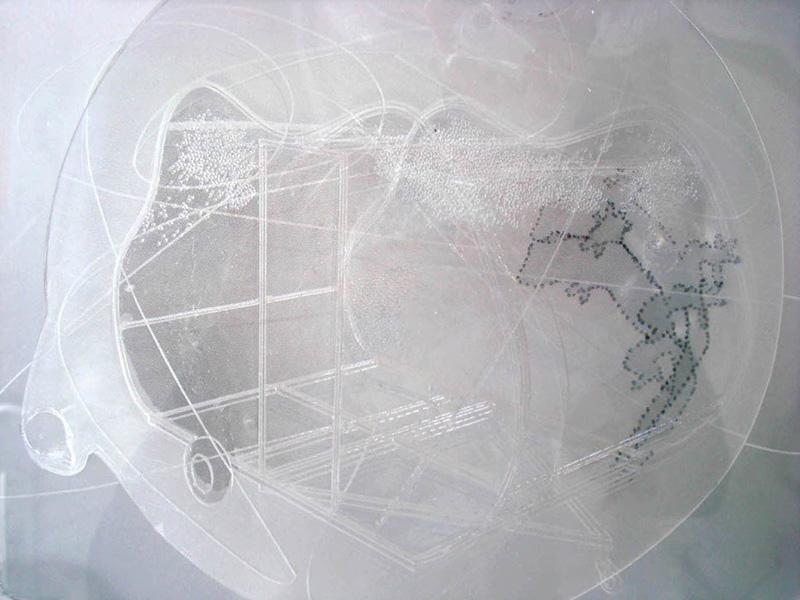 Quasi-trasparent Thoughts, (caravan gecko) 2007