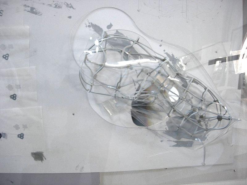 Morphic resonances (somnic flux) 2005