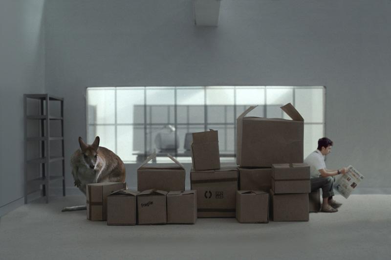 Zooffice, 2001