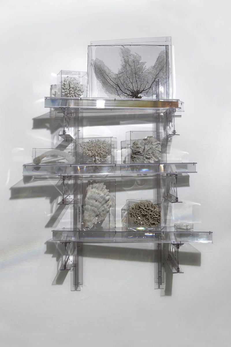 Rainbow Trusses (studio suggestions creatures III), 2010
