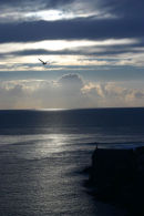 Porthleven Evening
