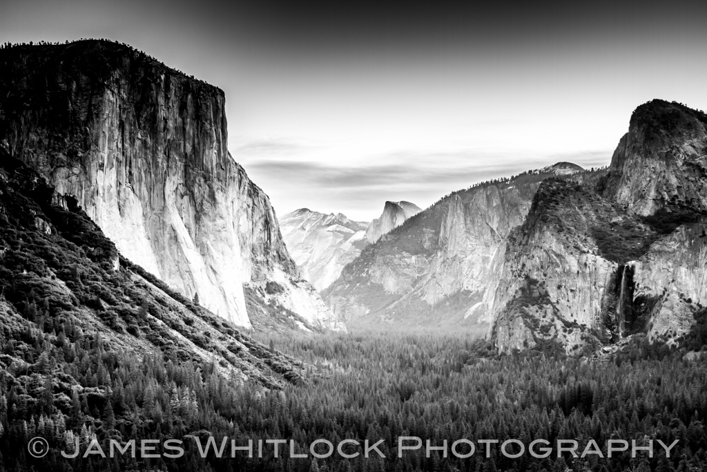 Black Tunnel View