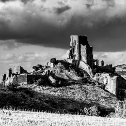 Corfe Castle Black