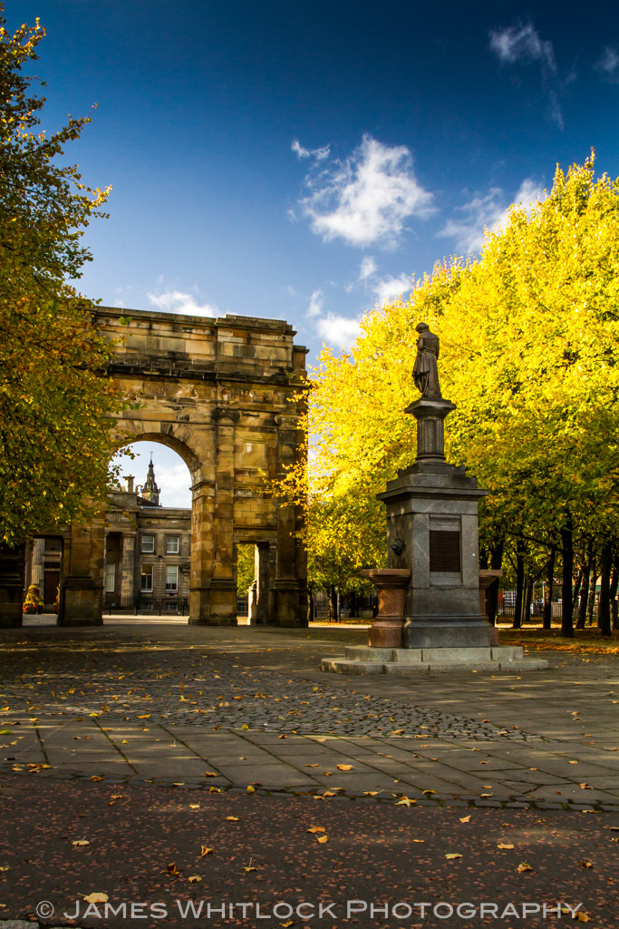 Golden Trees in Glasgow