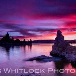 Mono Lake Tufa Panorama
